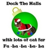 Hot Gifts For All Cat Lovers | CafePress Designs Via Flamin Cat Designs And Friends | Scoop.it