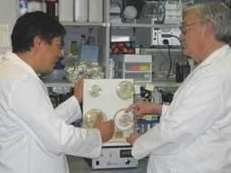 NASA Bioreactors Advance Disease Treatments   Stem cell bioprocesing   Scoop.it