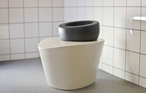 A Smart Toilet That Aims to Correct Poor Posture, and Even Detect Pregnancy and Disease | Innovation in Health | Scoop.it