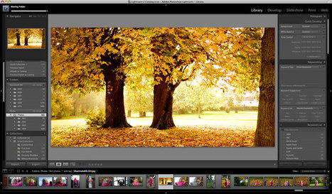 How to Move a Lightroom Catalogue (The Easy Way) | Sculpting in light | Scoop.it