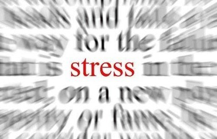 Social stress messes up the hippocampus | Coaching | Scoop.it