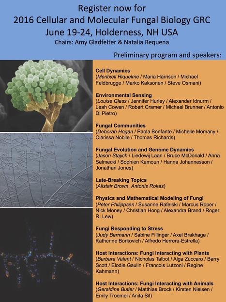 Gordon Research Conferences - Meeting - Cellular & Molecular Fungal Biology, June 2016 | Host-Pathogen Interactions | Scoop.it