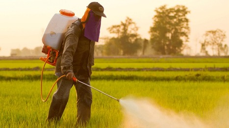 The US Government Is Pressuring Europe to Dial Back its Pesticide Rules | sustainability and resilience | Scoop.it