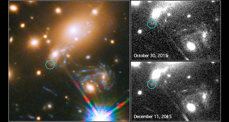 Supernova shows up a fifth time due to gravity warps | Amazing Science | Scoop.it