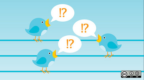 The Twitter Experiment – Twitter in the Classroom | Twitter in de klas | Scoop.it