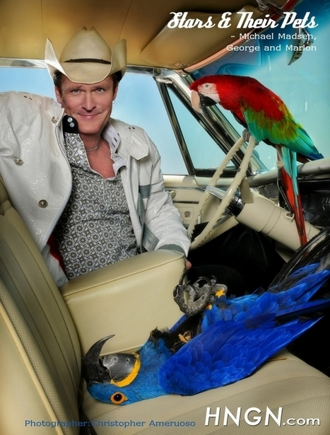 Michael Madsen And His Parrots George And Marlon | All Things Zygodactyl | Scoop.it