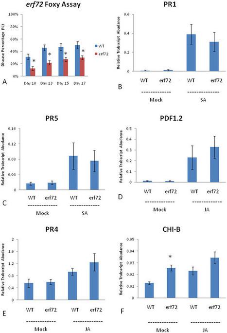 Root defense analysis against Fusarium oxysporum reveals new regulators to confer resistance | PlantBioInnovation | Scoop.it