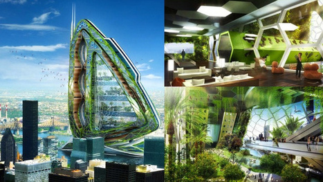 This is what farms will look like in the future   Trends in Sustainability   Scoop.it