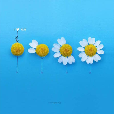 Artist Completes His Whimsical Illustrations with Blooming Flowers | Le It e Amo ✪ | Scoop.it