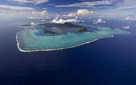 Pacific Oceanscape | Ocean Acidification | Scoop.it