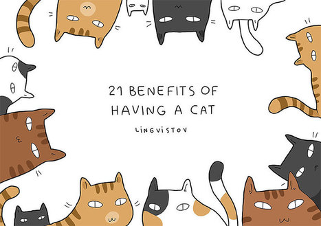 21 Reasons To Have A Cat | 16s3d: Bestioles, opinions & pétitions | Scoop.it