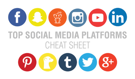 The 11 Best Social Media Platforms to Help Build Your Business | Mastering Facebook, Google+, Twitter | Scoop.it