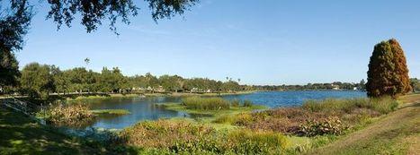 Crescent Lake Neighborhood Association | St. Petersburg Neighborhoods | Scoop.it