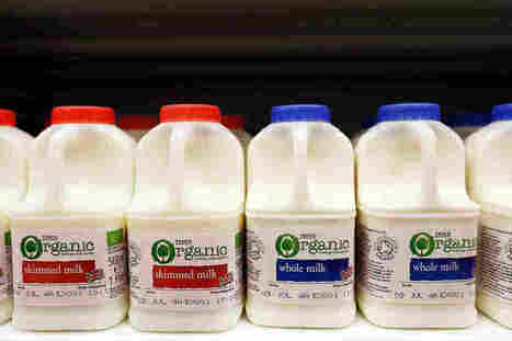 The Full-Fat Paradox: Dairy Fat Linked To Lower Diabetes Risk | PreDiabetes News | Scoop.it