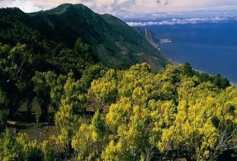Une île, paradis des EnR « Faites le plein d'avenir - Le webzine des Energies Renouvelables   De bonnes initiatives   Scoop.it