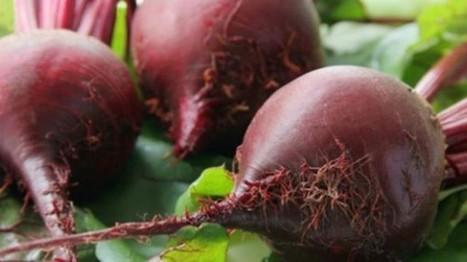 Beetroot Health Benefits – Why Should We Eat Beetroot ?   NutritionHub   Scoop.it