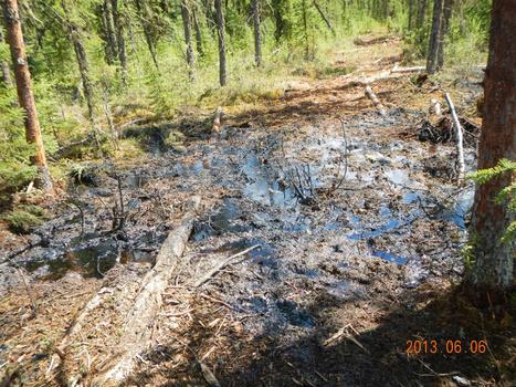 'Nobody understands' spills at Alberta oil sands operation | Toronto Star | Peak Oil | Scoop.it