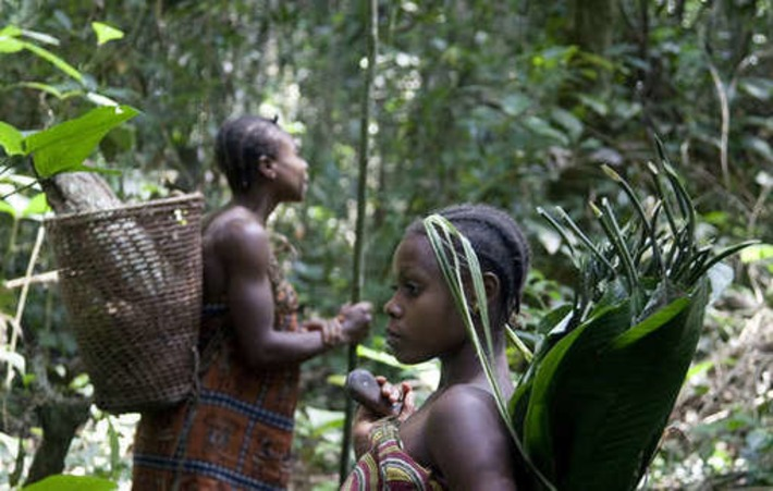 Cameroun : le WWF complice de violations des droits de l'homme | Survival International | Kiosque du monde : Afrique | Scoop.it