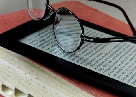 L'espace de veille des Médiathèques Valence Romans Sud Rhône Alpes - Le point de vue des bibliothécaires expérimentateurs de PNB | bib & actualités numériques | Scoop.it