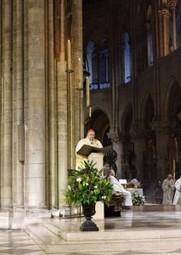 Cardinal Vingt-Trois : l'écologie, «une question de vie et de mort» | Echos des Eglises | Scoop.it