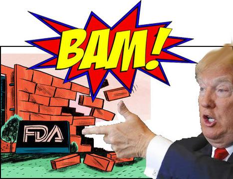 Will #FDA Survive Under President Trump? | Pharma Industry Regulation | Scoop.it