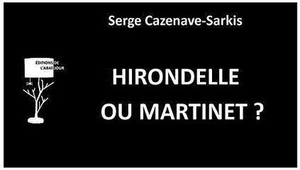 'Hirondelle ou martinet ?' / Serge Cazenave-Sarkis | Littérature et autres sujets essentiels | Scoop.it