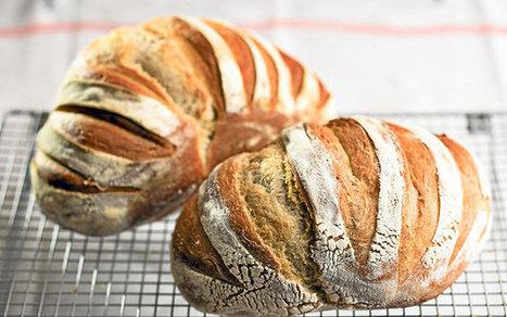 Rose Prince's baking club: sourdough bread - Telegraph.co.uk | bread | Scoop.it