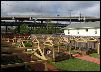 Louisiana Agritourism: Urban Farming for Kids in New Orleans | Vertical Farm - Food Factory | Scoop.it