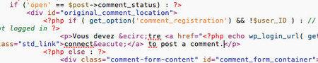 Comment Traduire son Thème Wordpress une Bonne Fois pour Toute   Infos utiles pour le Webmarketing   Scoop.it
