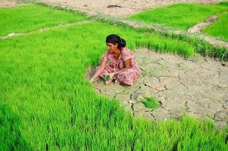 Training women to train others: a smart way to spread the message about gender and climate change | CCAFS: CGIAR research program on Climate Change, Agriculture and Food Security | Climate-Smart Africa | Scoop.it