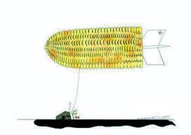 Aux États-Unis, les OGM de Monsanto ne font plus recette | Questions de développement ... | Scoop.it