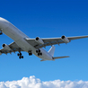Cheap Domestic Flights | Air Tickets Domestic | Domestic Flight Booking | Domestic Flights