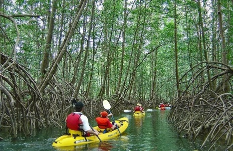 Costa Rica Best Family Vacation Packages | Finding best travel deals online | Scoop.it