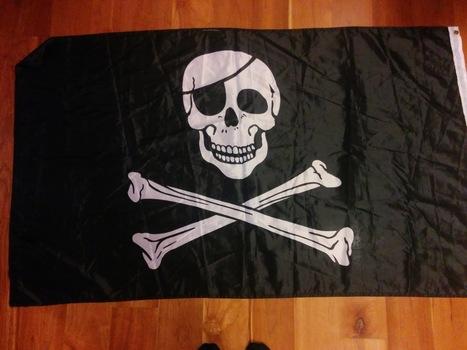 Etat d'urgence : un grenoblois dénoncé pour un drapeau pirate à sa fenêtre   ACTUALITÉ   Scoop.it