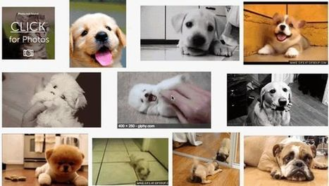 How to Animate GIFs in Your Google Search Results | Educational technology , Erate, Broadband and Connectivity | Scoop.it
