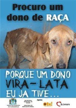Não tenha dúvidas, adote um vira-lata | Farmavet | VANTAGENS DA CASTRAÇÃO | Scoop.it