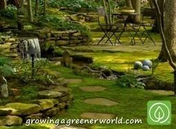 Episode 319: Moss Gardens | Growing A Greener World | Annie Haven | Haven Brand | Scoop.it