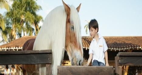 """Panaca"" Theme Park in Quindio | Ski+mal Ski and Farming Resort | Scoop.it"