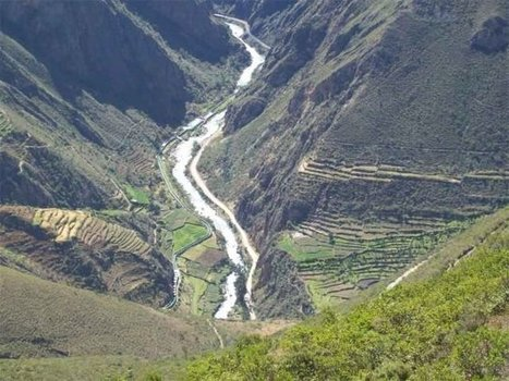 Minam celebra desde hoy semana de la Diversidad Biológica - Radio Programas del Perú   dobby57   Scoop.it