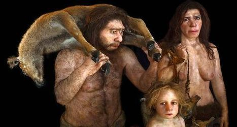 Lo que nos queda de neandertales | Los ojos humanos y de calamares evolucionaron a través de los mismos genes | Scoop.it