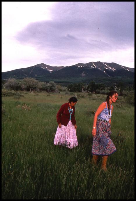 Luminarias: Giving Voice to Folk Herbalism » The Medicine Woman's Roots   Herbalism   Scoop.it