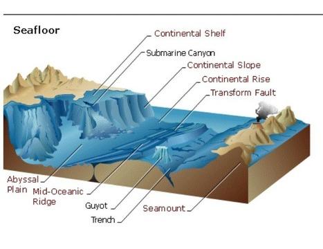 Ocean Landforms | The Wonderful World of Science | Landforms and Oceans: Landforms of the Ocean Floor | Scoop.it