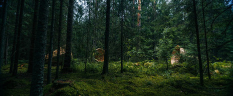 Unplugged kingsize megaphones help nature explorers hear the forests — Estonian Academy of Arts | DESARTSONNANTS - CRÉATION SONORE ET ENVIRONNEMENT - ENVIRONMENTAL SOUND ART - PAYSAGES ET ECOLOGIE SONORE | Scoop.it