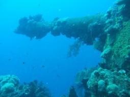 8 Must-Dive Tec Destinations - Diving, Travel | DiverSync | Scoop.it