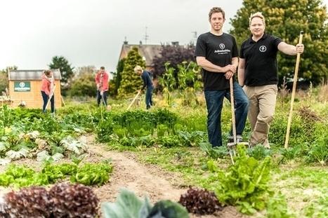 Ackerhelden : l'agriculture urbaine made in Berlin   Efficycle   Scoop.it