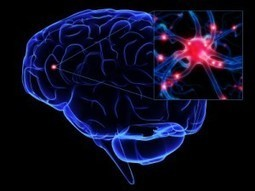 Traumatic Brain Injury and Post-Acute Decline: What Role Does Environmental Enrichment Play? A Scoping Review | Occupational Therapy | Scoop.it