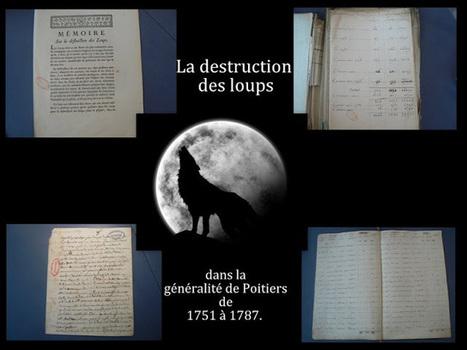 Lulu Sorcière Archive: L comme Loups du Poitou #challengeAZ | La Pissarderie | Scoop.it