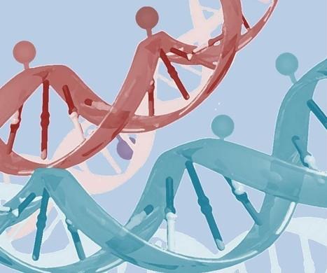 Análisis de metilación del ADN libre en sangre para detectar múltiples patologías - Genética Médica | Salud Publica | Scoop.it