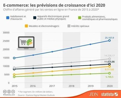 Quelle croissance pour l'e-commerce français d'ici 2020 ? | Auto-entrepreneur, PME, TPE, E-commerce | Scoop.it