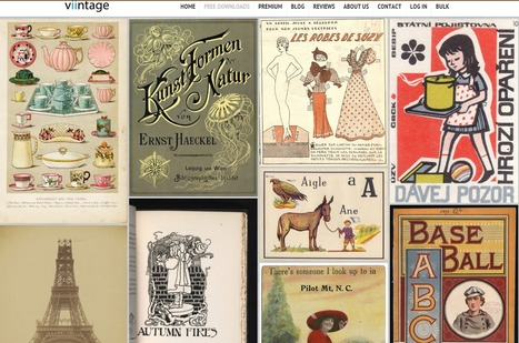 Free Downloads Archives - Public Domain Images | Human Interest | Scoop.it